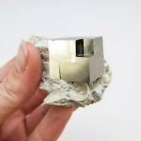 Pyrite on Matrix from Navajún, La Rioja, Spain; Cube Size: 2.2cm x 2cm x 1.7cm