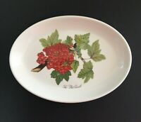 Portmeirion Pottery Oval Baking Serving Decorative Dish The Red Currantl England