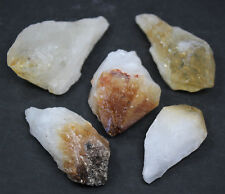 "Lot of 5 LARGE Citrine Point Crystals Large 1"" to 2"" Gemstones US Seller"