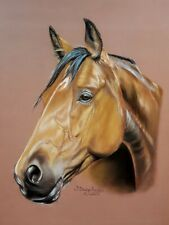 Pastel original  painting on Paper horse equine portait Aristo hand made Signed