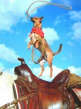 """Today It All Revolves Around You!"" AVANTI FUNNY BIRTHDAY CARD Cowboy Dog Lasso"