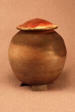 RAKU Unique Ceramic Pet Funeral Cremation Urn #P0012