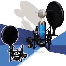 Audio Professional Condenser Microphone Studio Sound Recording W/ Shock Mount BT