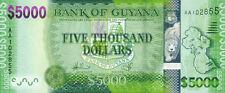 Guyana P-40 5000 dollars (2013) UNC