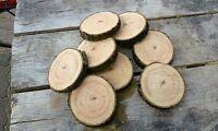 3 Baumscheiben, Baumscheibe, Holzscheibe, 23-25x2 cm, Esche