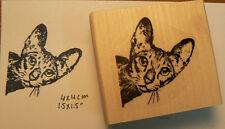 P46 Cat peeking rubber stamp WM