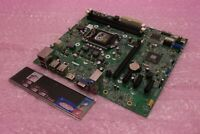 Dell 42P49 042P49 LGA1155 DDR3 VGA HDMI OptiPlex 3010 MT Motherboard and IO