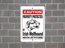 Property protected by Irish Wolfhound dog breed with attitude metal sign #B