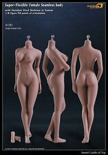 1/6 Phicen Super-Flexible Steel Skeleton Seamless Suntan Large Bust S12D Body