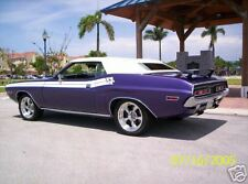 Dual Longitudinal Side stripe kit for 1971 Dodge Challenger fits other years