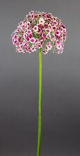 Allium Natura 86cm creme-fuchsia CG Kunstblumen künstliches Allium Seidenblumen