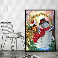 5d Diy Diamond Painting Snowman Needlework Special Shaped Cross Stitch Kits