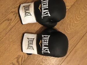Everlast boxing Training gloves