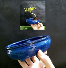 Bonsai Land/Water Pot - Dark Blue color glaze coating - High Quality