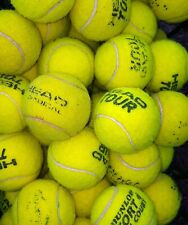 25 Used Tennis balls - Head Tour / Tour XT