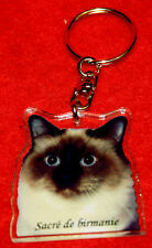 porte-cles chat sacre de birmanie 3cat keychain llavero gato schlusselring katze