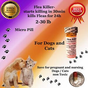 100 instant Flea Killer for Dogs / Cats 2-30 lb