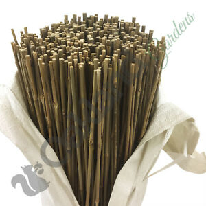 20 x 3ft (90cm) Thin Bamboo Canes Sticks Strong Garden Plant Support 8-10mm