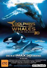 Full Screen DVD: 4 (AU, NZ, Latin America...) Commentary DVD & Blu-ray Movies
