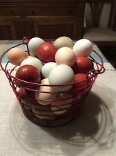 12+ Rainbow chicken hatching eggs