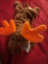 Ty Beanie Baby Chocolate the Moose Pe Pellets 1993 Errors Mint Condition Rare!