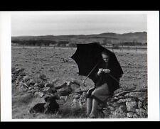 SERIERS (15) GARDIENNE de VACHES au tricot en 1988