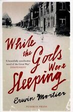 While the Gods Were Sleeping  (ExLib) by Erwin Mortier