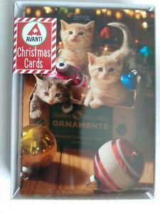 Kittens In Ornament Box Box of 10 Cute Cat Avanti Christmas Cards