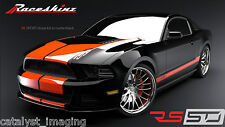 Raceskinz® Juke(TM) Signature 2013 2014 Mustang Stripe Kit RS50