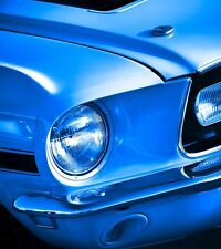 1968 Ford Mustang GT/CS Photo Print 13x19 Art Muscle Pony Car California Special