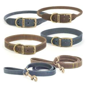 Ancol Timberwolf Strong Luxury Leather Dog Puppy Collar & Lead Sable Brown Blue