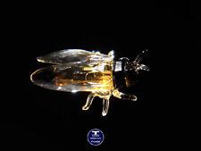 """[SPECIAL OFFER] """"Cicada"""" Austrian Crystal Figurine was AU$32.00"""