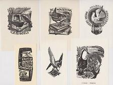 6 BIRD Wood Engravings Gerard GAUDAEN Vogel exlibris Mid-Century X2 House Toucan
