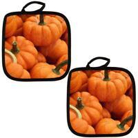 Autumn Pumpkins Pumpkin Patch All Over Pot Holder (Set of 2)
