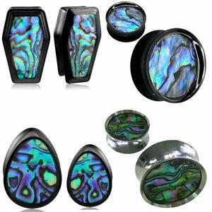 Ear gauges ear plugs stretched ear flesh tunnel organic shell abalone steel