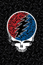 "Sunshine Joy Grateful Dead Steal Your Face Tapestry 52x80"" FREE SHIPPING NEW"