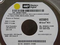 250 GB WD WD2500YS-01SHB0 / DSBHYT2CAB / OCT 2006 / 2060-701335-005 REV A
