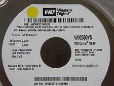 250gb WD wd2500ys-01shb0/dsbhyt 2cab/oct 2006/2060-701335-005 REV A