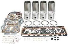 David Brown 30D, 880, 900 ,950 Implermatic Engine Overhaul Kit- Straight Liner