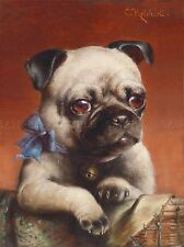PAINTING ANIMAL PORTRAIT REICHERT MOPS PUG PUPPY CUTE ART PRINT LAH460A