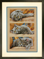 Dimensions Cross Stitch Kit - Max The Cat