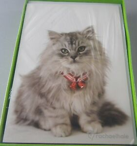 16 Rachale Hale  Kitten with Bells Christmas Cards  Kitty Cat
