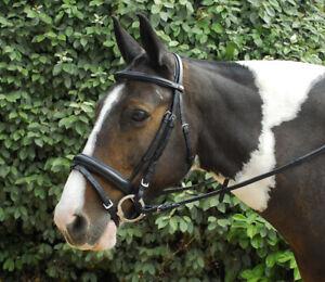 Windsor Leather COMFORT Bridle With Crank Flash Noseband + Reins Horse Pony Cob