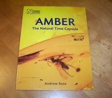 AMBER The Natural Time Capsule Insects Gemstone Natural History Ancient Book NEW