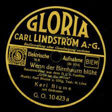 ORIGINAL-BAYRISCHE KAPELLE Trompeten-Ländler/ Bayrisch... Schellackplatte S2289