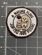 A Nature Fling JUP-TEQ 1985 PGGSC Patch Owls Girl Scouts Jupiter-Tequesta FL '85