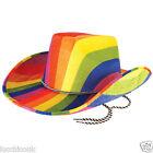 Adults Gay Pride Carnival Cowboy Rainbow Felt Hat Fancy Dress Accessory Party