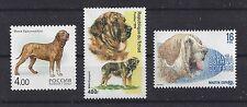 Dog Art Head Body Study Portrait Postage Stamp Spanish Mastiff 3 Different x Mnh
