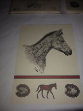 New 8 Blank Notecards Wild Horse Pen and Ink