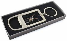 Spider on His Dew Drop Web Craft Chrome Metal Bottle Opener Keyring in, I-SP1MBO